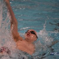 2019 » 2019-02-10 - Meeting national de Sarcelles - Jour 2 - Hommes - 200m dos